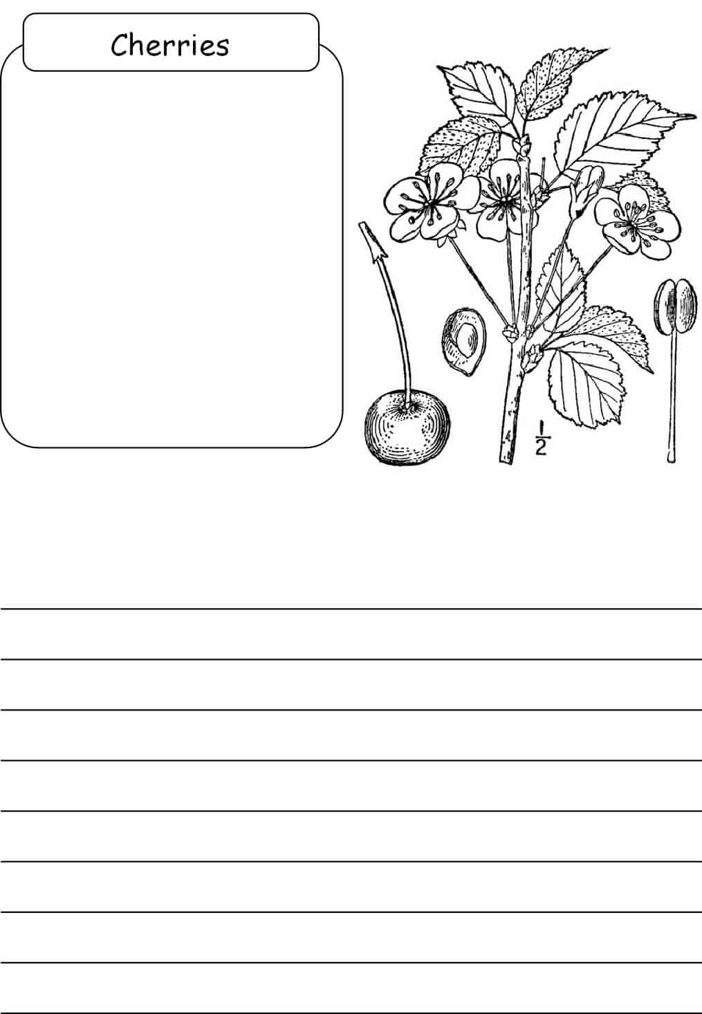 cherries-notebooking-page