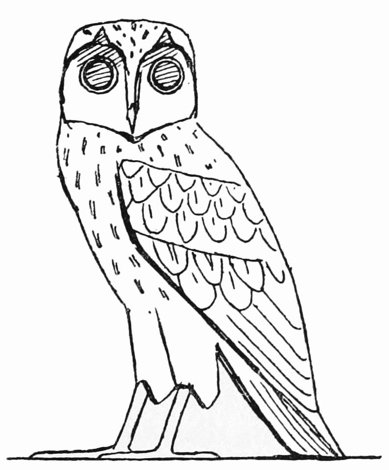 ancient-barn-owl-drawing