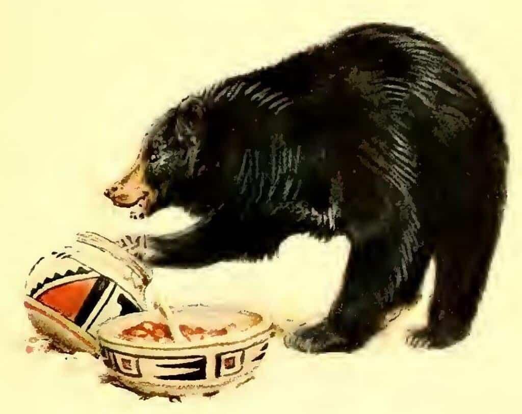 bear-and-jars-1024x812