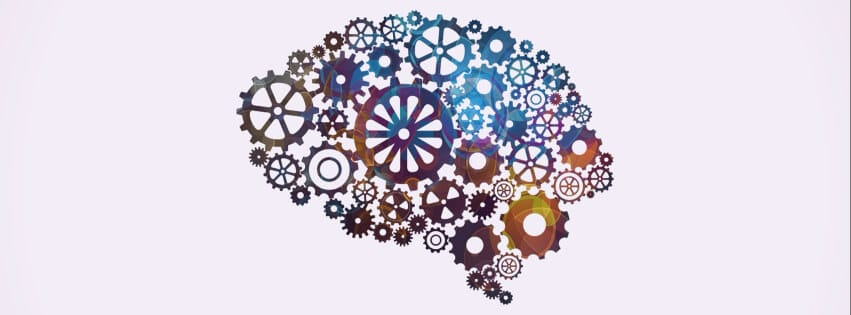 Your brain is made up of many different facets and cogs working together