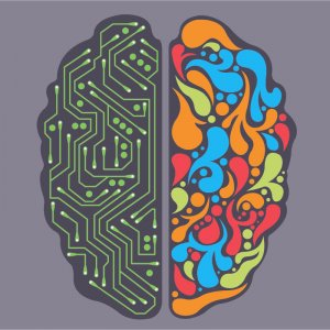Your brain has Multiple Intelligences