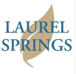 Best online high schools guide to understanding online k12 laurel springs school helps students think about the world and solve problems in new ways extremely flexible and engaging curriculum allows students to fandeluxe Gallery