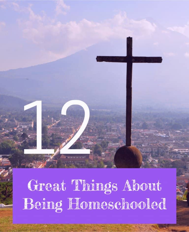 A homeschooler recounts her 12 favorite things about her homeschooling experience