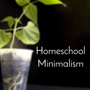 Homeschool Minimalism