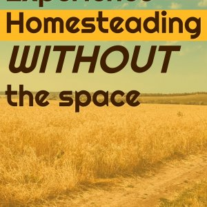Experience homesteading without the space