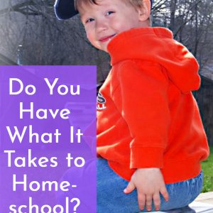 Do you have what it takes to successfully homeschool your children?