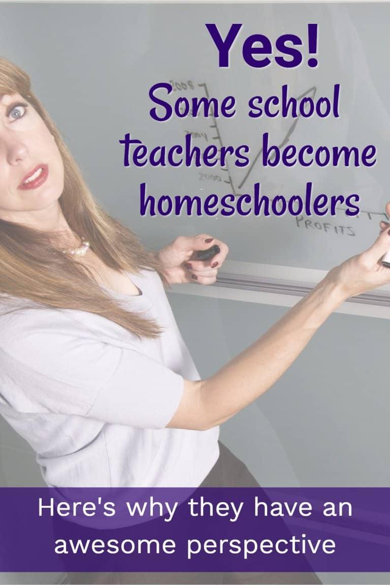 The Unique Perspective of a Teacher-turned Homeschooler | Homeschool ...